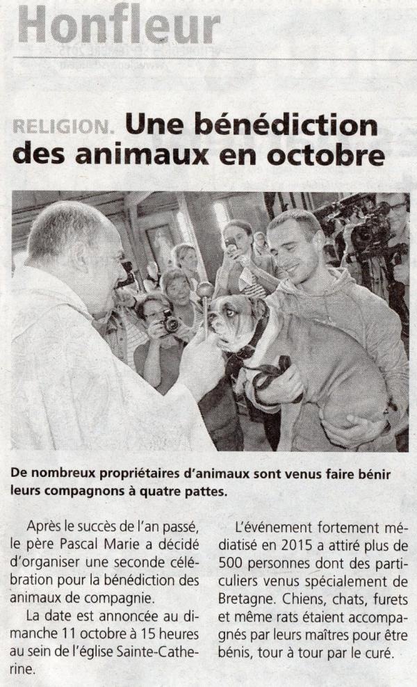 benediction animaux